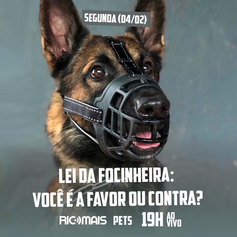 RIC Mais Pets: lei da Focinheira