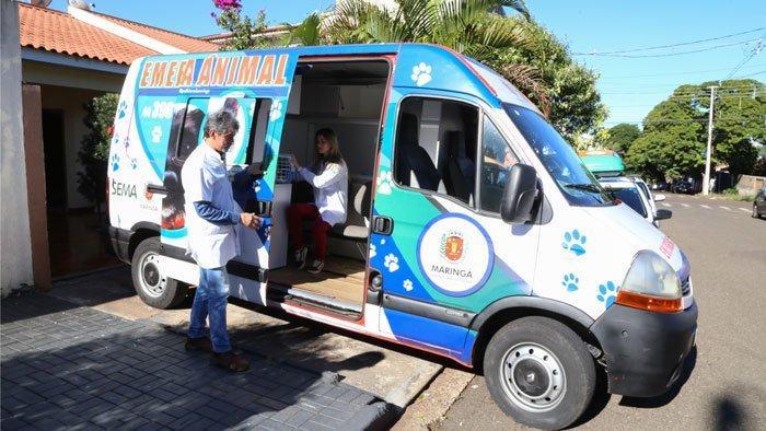Projeto Emergência Animal atende animais de rua em Maringá
