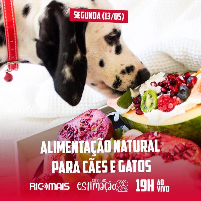 RIC Play apresenta - Canal de Estimação: alimentação natural para cães e gatos
