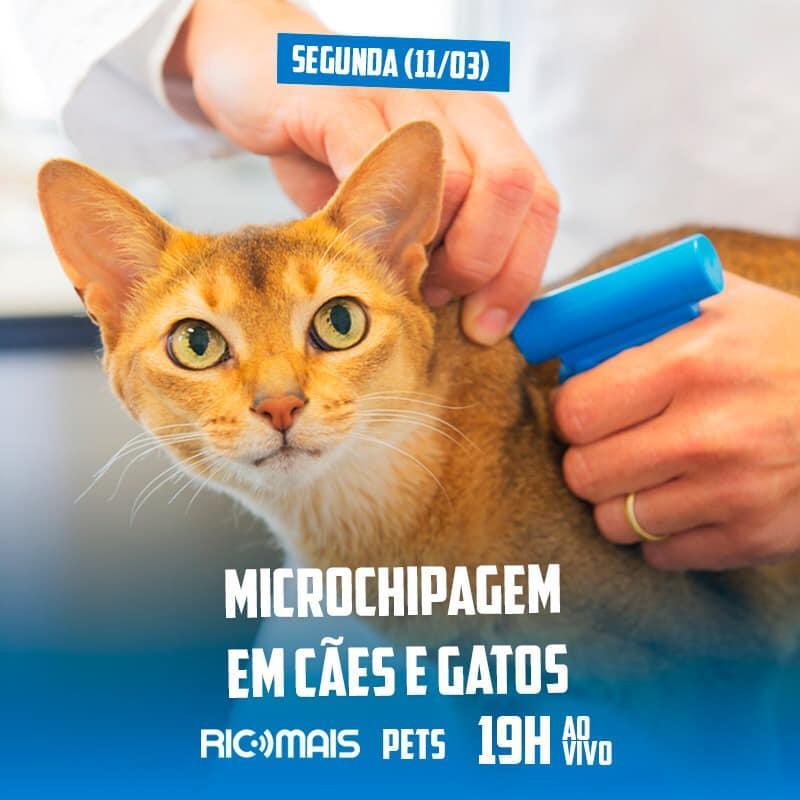 RIC Mais Pets: Microchipagem em cães e gatos