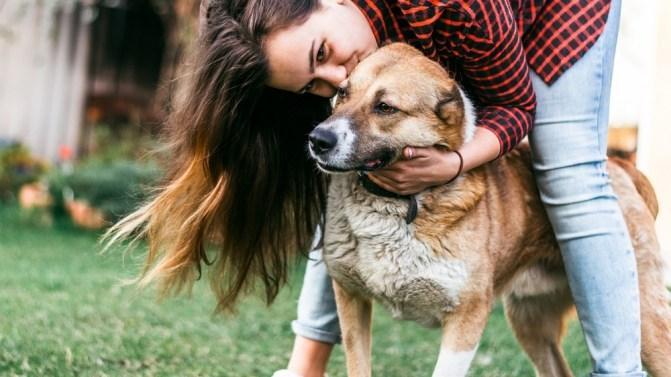 Mulheres preferem a companhia do cão a do parceiro