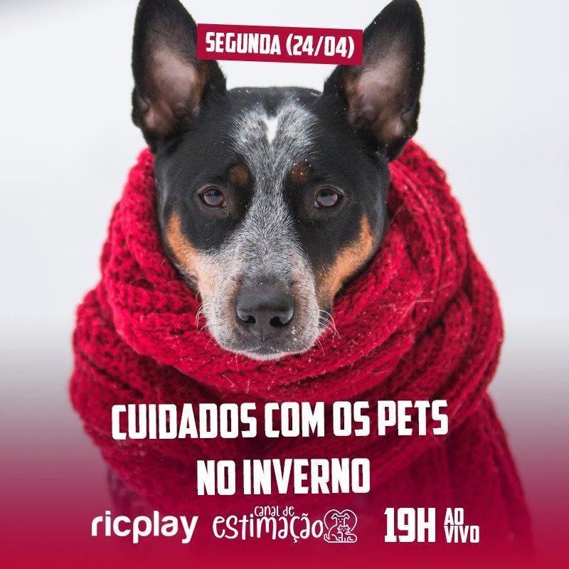 RIC Play apresenta - Programa de Estimação: cuidados com os pets no inverno