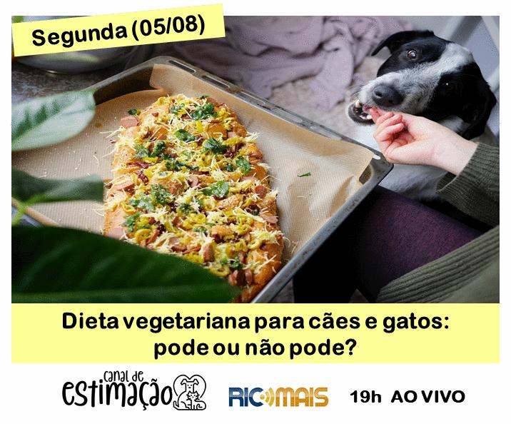 RIC Play apresenta - Programa de Estimação: dieta vegetariana para cães e gatos: pode ou não pode?