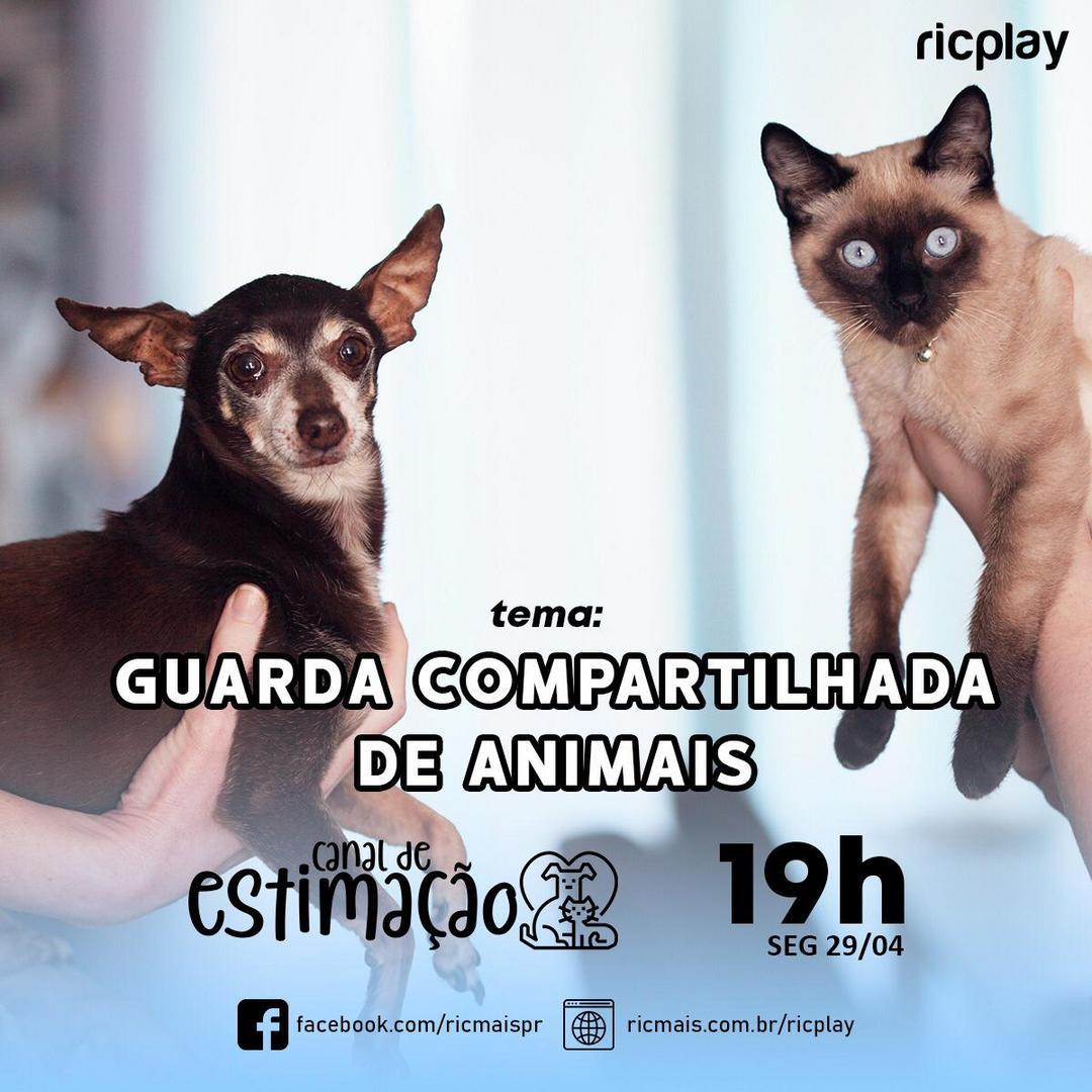 RIC Play apresenta - Canal de Estimação: guarda compartilhada de animais