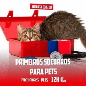 RIC Mais Pets: primeiros socorros para pets