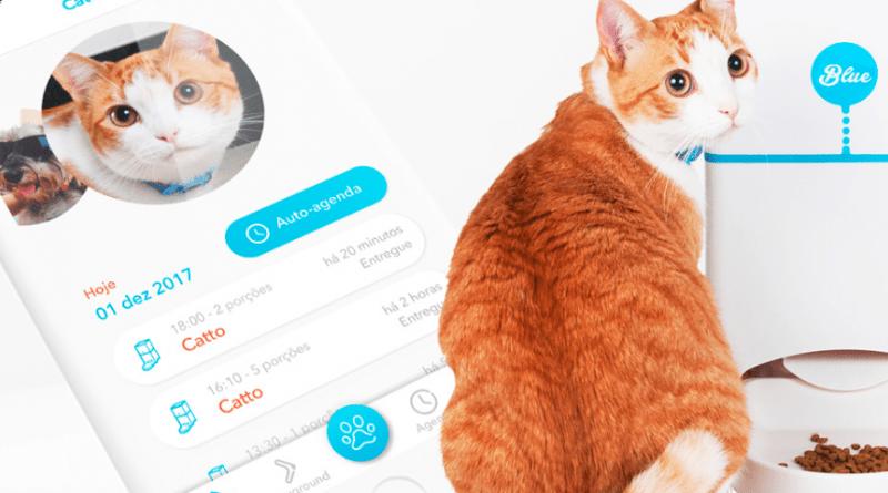 Startup curitibana cria câmera para monitoramento à distância dos pets