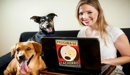 Aplicativo ajuda na busca por cães perdidos em todo Brasil