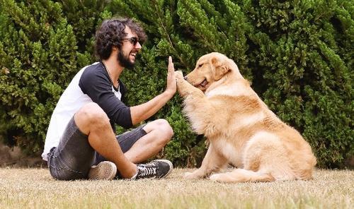 Comunicação animal, é possível?