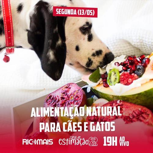 RIC Play apresenta - Programa de Estimação: alimentação natural para cães e gatos