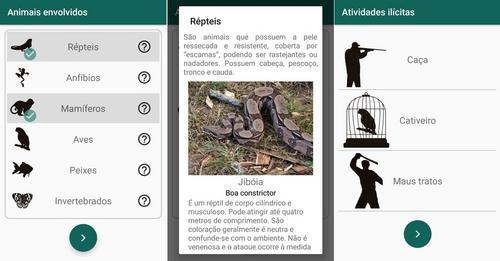 Universitários desenvolvem aplicativo para combater caça de animais silvestres no Piauí