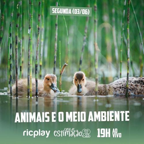 RIC Play apresenta - Programa de Estimação: animais e meio ambiente