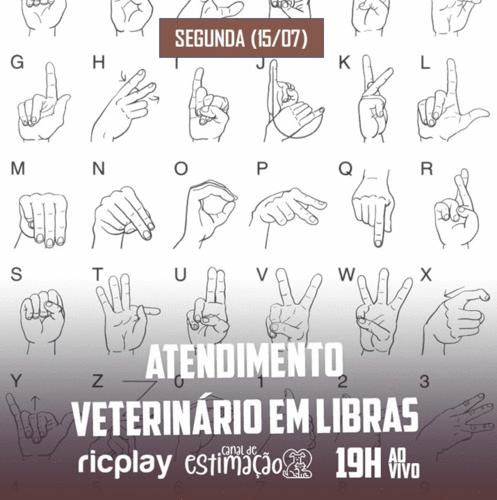 RIC Play apresenta - Programa de Estimação: atendimento veterinário em Libras