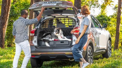 Você compraria um carro específico para quem tem animais?