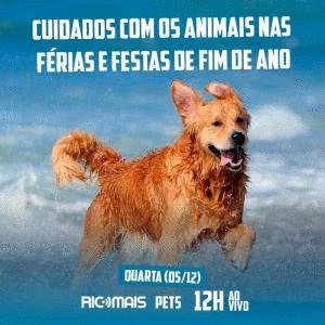 RIC Mais Pets:cuidados com animais nas férias e festas de final de ano