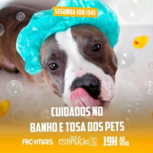 RIC Play apresenta - Programa de Estimação: cuidados no banho e tosa dos pets