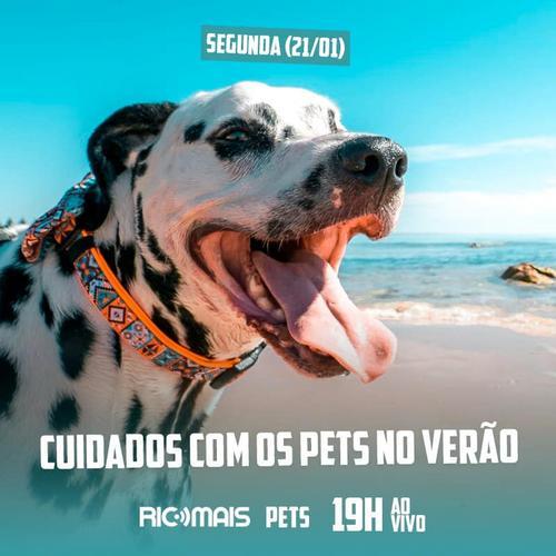 RIC Mais Pets: cuidados com os pets no verão