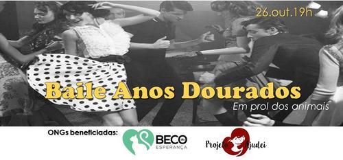 Curitiba terá noite especial em solidariedade aos animais que vivem em abrigos